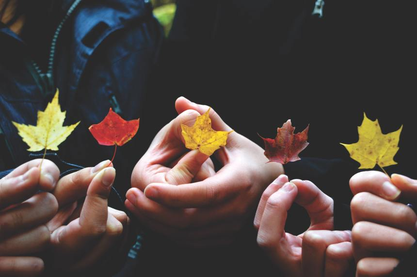 people holding fall leaves